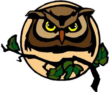Wise Owl (Woodland Indian Myth) - Native Americans in Olden